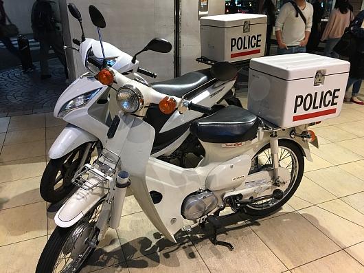 sirobai20170550cc.JPG